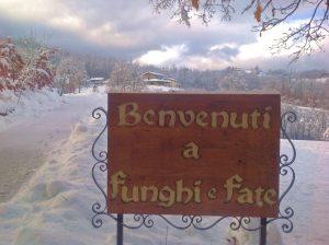 Benvenuti a Funghiefate